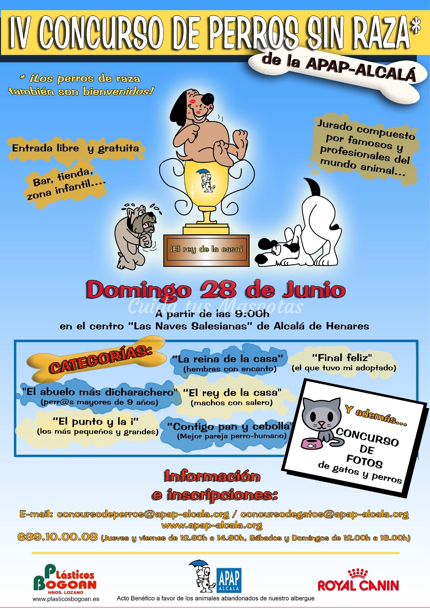 iv_concurso_perros09