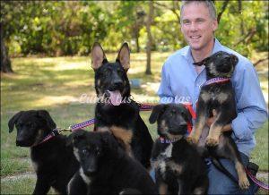 perro-clonado-hero-torres-gemelas2