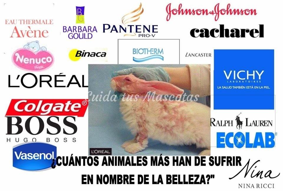 marcas que testan con animales