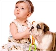 bebe-y-perro
