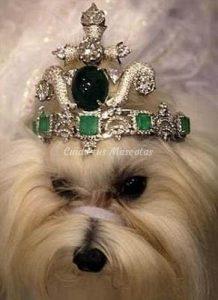 tiara-esmeraldas-y-titanio