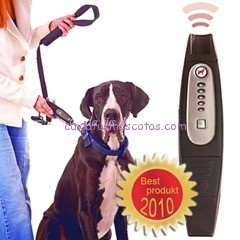 dog-e-walk_dogtrainer