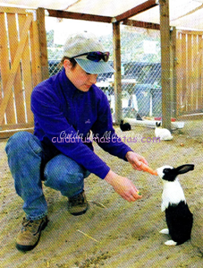 clicker conejo