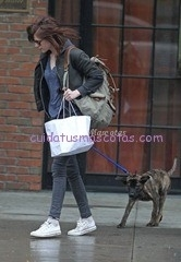 Kristen Stewart Taking Her New Dog For A Walk