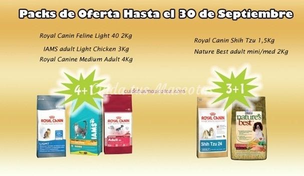 oferta royal canin