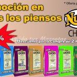 nutro_promocion