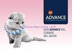 guia Gatitos advance