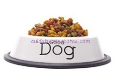 Good Dog Food