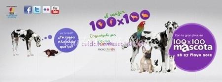100x100 mascota