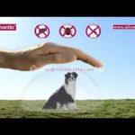 ADVANTIX: la pipeta que previene la Leishmaniosis de tu perro