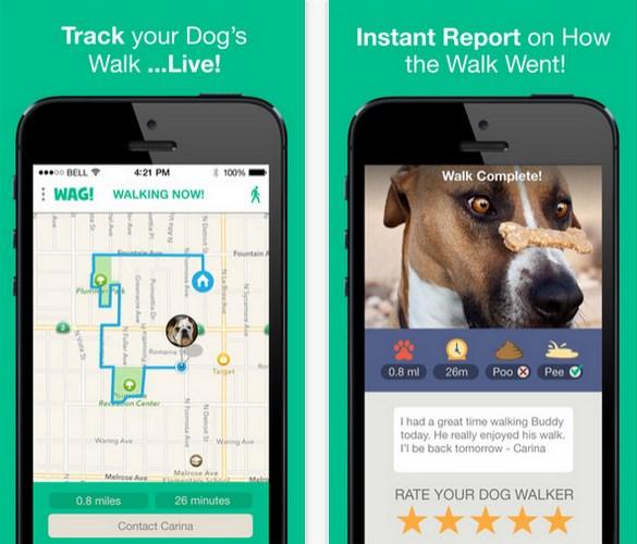 Wag, aplicación para mascotas